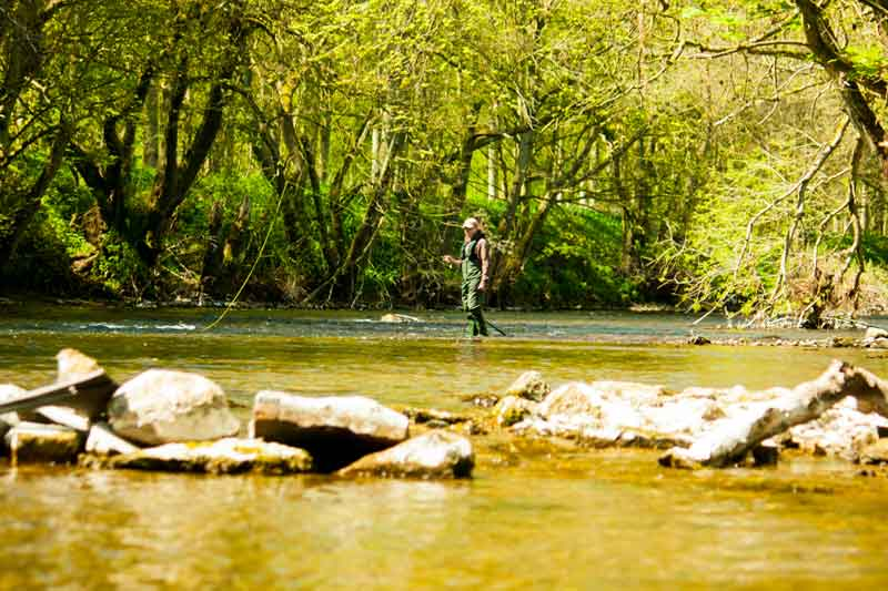 fly-fishing-wading-in-river